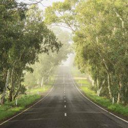 Adelaide-Hills-in-Australia.jpg